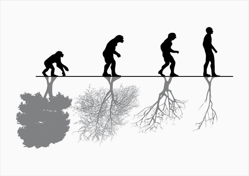 Nature: human nature